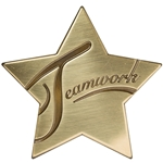 Teamwork Star Medallion