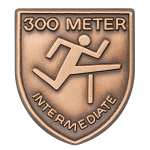 300 M Int Hurdles Lapel Pin
