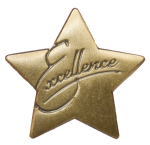 Excellence Star Pin