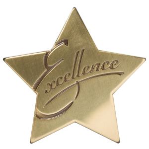 Excellence Star Medallion